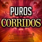 Puros Corridos by Various Artists