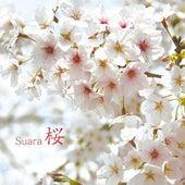 Sakura by Suara