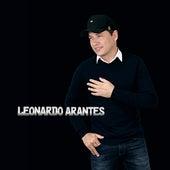 Espelho Espelho Meu de Leonardo Arantes