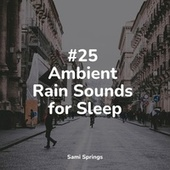 #25 Ambient Rain Sounds for Sleep by Instrumental