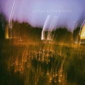 Unfucktheworld von Dylan Pham