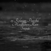25 Relaxing Peaceful Mindfulness Rain Sounds by Massage Tribe