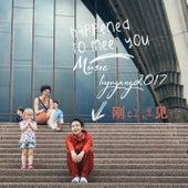 Happened to Meet You de Li Yugang
