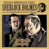 Das Rätsel des Luxushotels (Sherlock Holmes: Aus den Tagebüchern von Dr. Watson) von Sherlock Holmes