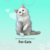 Instrumentals & Music For Cats by Pet Music Therapy