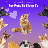 Instrumentals & Music For Pets To Sleep To by Pet Music Therapy
