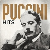 Puccini Hits von Various Artists