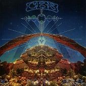 Big Moon Ritual de Chris Robinson