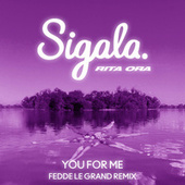 You for Me (Fedde Le Grand Remix) by Sigala