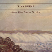 Some Were Meant For Sea by Tiny Ruins
