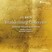 J.S. Bach: Brandenburg Concertos de Akademie für Alte Musik Berlin