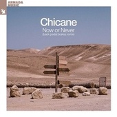 Now Or Never (Back Pedal Brakes Remix) by Chicane