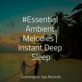 #Essential Ambient Melodies   Instant Deep Sleep by Sleeping Baby Songs