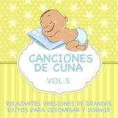 Canciones de Cuna - Relajantes Versiones de Grandes Éxitos para Descansar y Dormir, Vol. 5 by Sleeping Bunnies