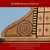 Vivaldi: the Four Seasons - Walter Rinaldi: Orchestral Works - Pachelbel: Canon in D Major - Schubert: Ave Maria - J.S. Bach: Jesu, Joy of Man's Desiring - Albinoni: Adagio in G Minor - Paradisi: Toccata - Wedding March - Bridal Chorus - Vol. 8 by Pachelbel Society Orchestra