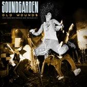 Old Wounds de Soundgarden