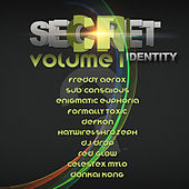 Secret Identity: Volume 1 by Various Artists