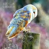 Ghost Owl de Brooks Williams