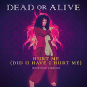 Hurt Me (Did U Have 2 Hurt Me) (Extended Version) by Dead Or Alive