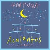Acalantos com Fortuna de Fortuna