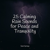 25 Calming Rain Sounds for Peace and Tranquility de Rainmakers
