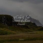 25 Calm & Soft Sounds of Rain Sounds by Sleepy Times