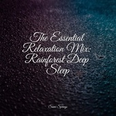The Essential Relaxation Mix: Rainforest Deep Sleep by Sleepy Times
