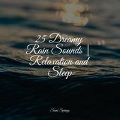 25 Dreamy Rain Sounds | Relaxation and Sleep by Sleepy Times