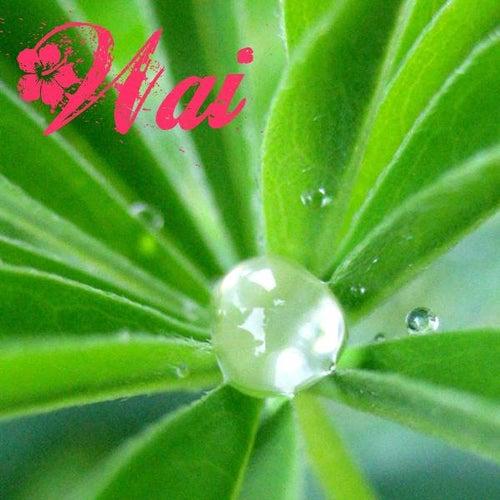 Wai: Hawaiian Fresh Water Songs by Kim Sueoka