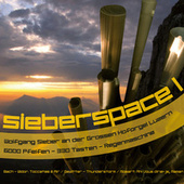 sieberspace I fra Wolfgang Sieber