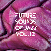 Future Sounds Of Jazz Vol. 12 von Various Artists