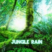 Jungle Rain by Nature Sound