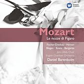 Le Nozze Di Figaro (2004) by Wolfgang Amadeus Mozart