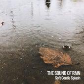 The Sound of Rain: Soft Gentle Splash de Massage Tribe