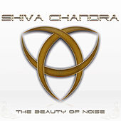 The Beauty of Noise by Shiva Chandra