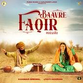 Baavre Faqir by Kanwar Grewal