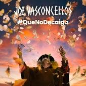 Que No Decaiga de Joe Vasconcellos