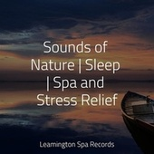 Sounds of Nature | Sleep | Spa and Stress Relief de Rainmakers
