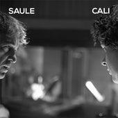Avant qu'il ne soit trop tard (Radio edit) von Saule