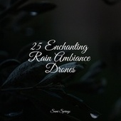 25 Enchanting Rain Ambiance Drones by Massage Therapy Music