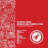 Critical Mass Vol. 1 von REAPER Space Yacht