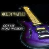 Got My Mojo Workin de Muddy Waters