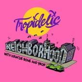 Neighborhood by Tropidelic