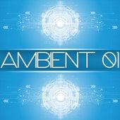 Ambient 01 de Various Artists