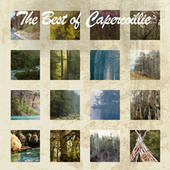 The Best Of Capercaillie by Capercaillie