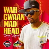 Wah Gwaan Mad Head by Busy Signal
