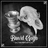 Silver Cup by David Gogo