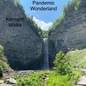Pandemic Wonderland de Kenneth Widra