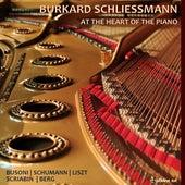At the Heart of the Piano by Burkard Schliessmann