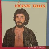 Olhar De Vagalume by Vicente Telles